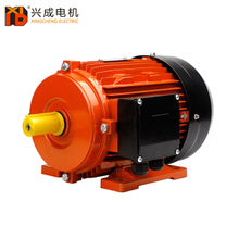 MS Series Aluminium Housing Three Phase Induction Motor